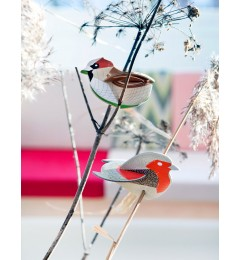 studio ROOF pop out card - finches